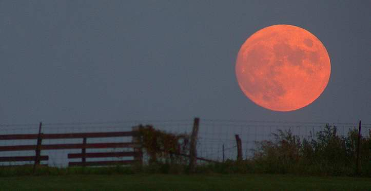 Supermoon at the horizon. Wikipedia Commons.